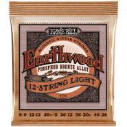 Ernie Ball EB2153 Acoustic 12-String light