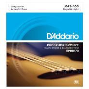 D'Addario EPBB170 Acoustic Bass Strings
