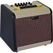 Career CA60A Acoustic Guitar Combo