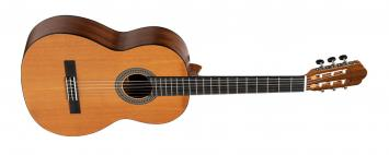 VGS Konzertgitarre Pro Natura Bronze Siana