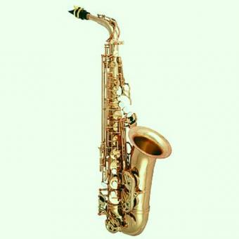 Antigua AS6200VLQ-GH Pro One Altsaxophon