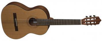 VGS Konzertgitarre Pro Arte CM-75 Maestro
