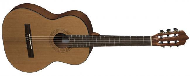 VGS Konzertgitarre Pro Arte CM-100 Maestro