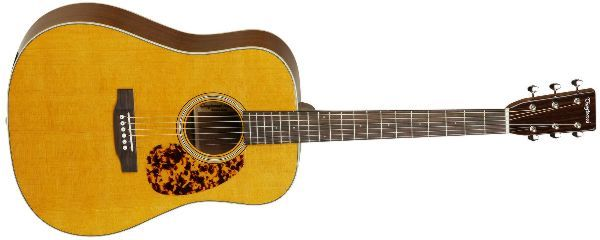 Tanglewood TW40DANE E-Akustikgitarre