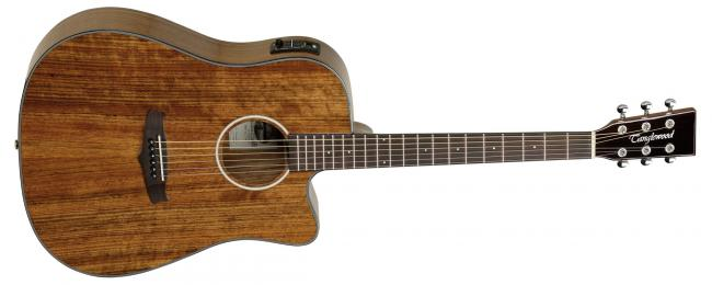 Tanglewood TW28CEXOV E-Akustikgitarre